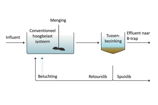 aq76-gulzige_bacterien-francis_meerburg-foto_3a_nl.jpg
