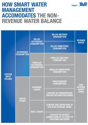 howsmartwatermanagementaccomodatesthenonrevenuewaterbalancefoto2.jpg
