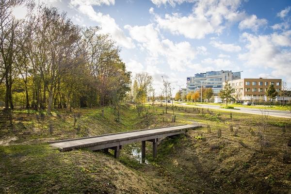 beeld11frederikbeyensbrialmontpark013.jpg