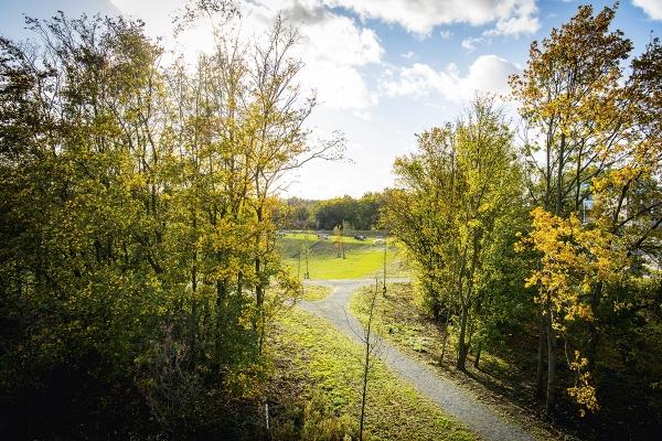 beeld11frederikbeyensbrialmontpark019.jpg
